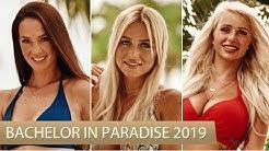 Bachelor in Paradise 2019: Das sind die Bachelor Kandidatinnen