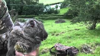 Successfull rabbit hunting