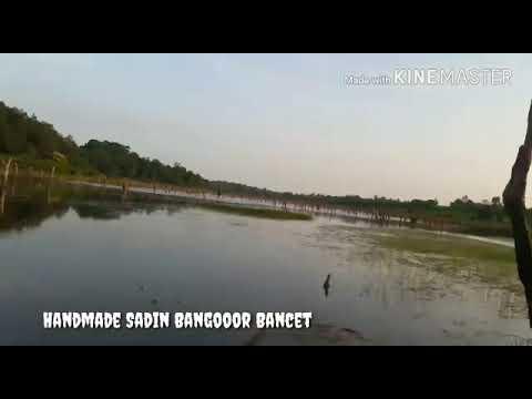 ANGLER YV FROM BANGKA STRIKE MAMI GABY (LIZARD_frog BANGOOR LURE)