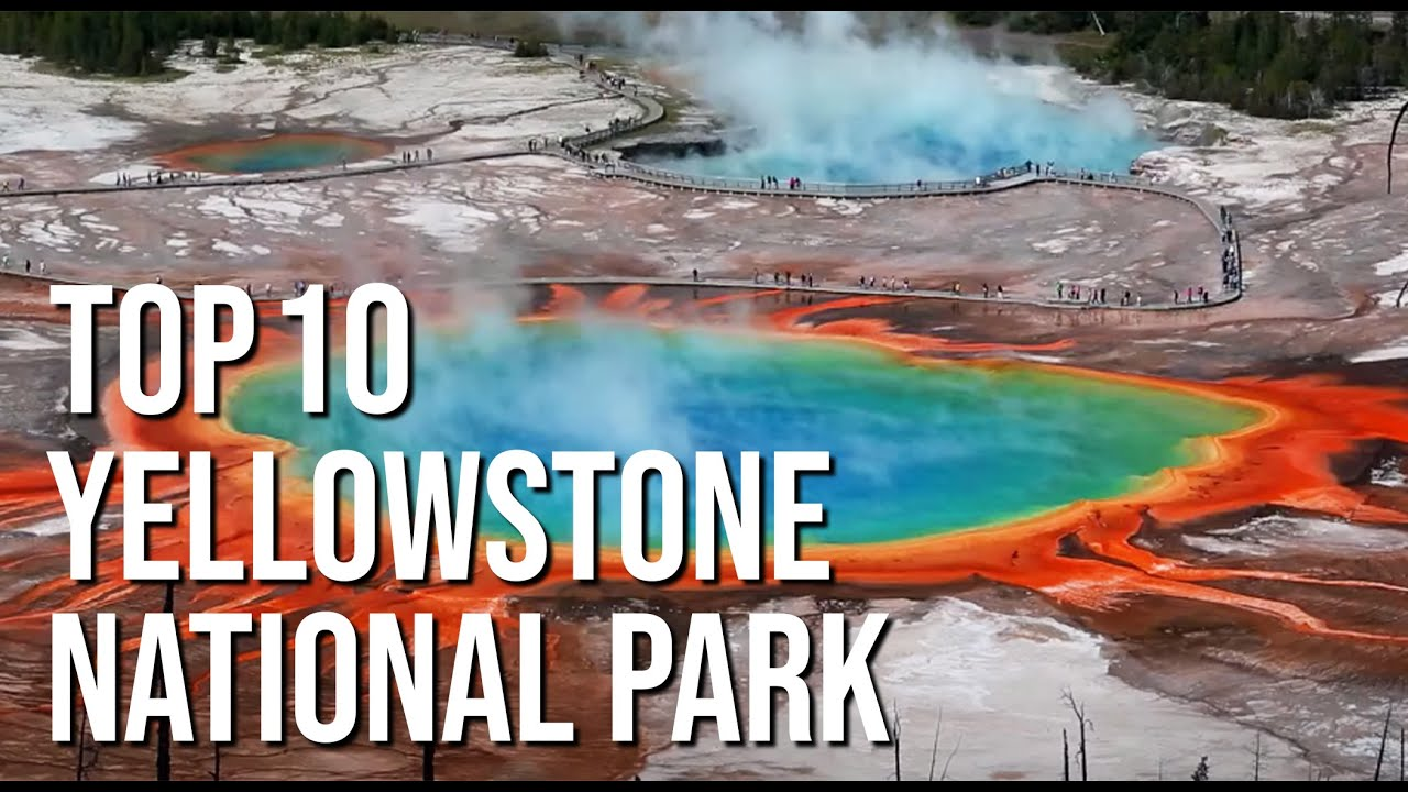 Download Top 10 Things to do in Yellowstone National Park