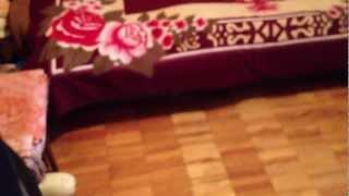 Купить 4 комн. квартиру Омск Маленькая комната 9,5 кв.м(, 2012-12-08T09:36:21.000Z)