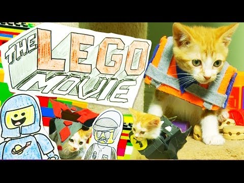 The LEGO Movie (Cute Kitten Version)