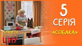 Вижити за будь-яку ціну 5 серія - Собака  | Дизель Студио
