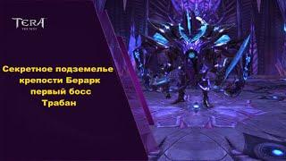 Крепость Берарк, 1 босс, гайд Tera online