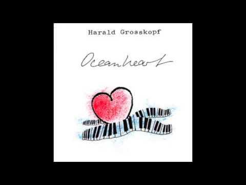 Harald Grosskopf - While I'm Walking