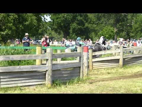 41 Dorothy Kelly IRL), FEI Adv  Horse, Sandringham Horse Driving Trials 2013, Marathon O1