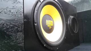 Bass i love you  @Audio System Subwoofer