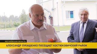 Лукашенко посетил рыбную ферму и попробовал белорусскую икру