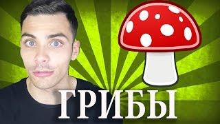 10 ИНТЕРЕСНЫХ ФАКТОВ О ГРИБАХ...