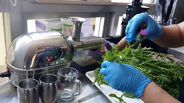 #암을 이기는 쥬스#엔절녹즙기# 암을 이기려면 생효소를 먹어야 해요  Anticancer green juice