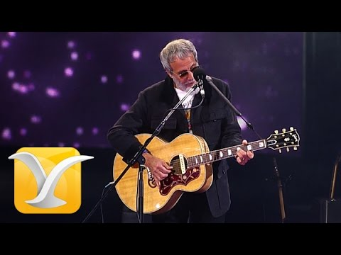Yusuf Cat Stevens, The First Cut is the Deepest, Festival de Viña 2015, HD 1080p
