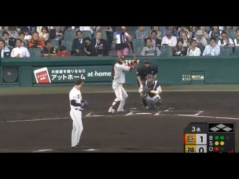 japanese baseball live betting