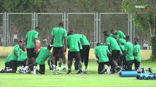 Finale CAN 2019: Galop d'entrainement des lions