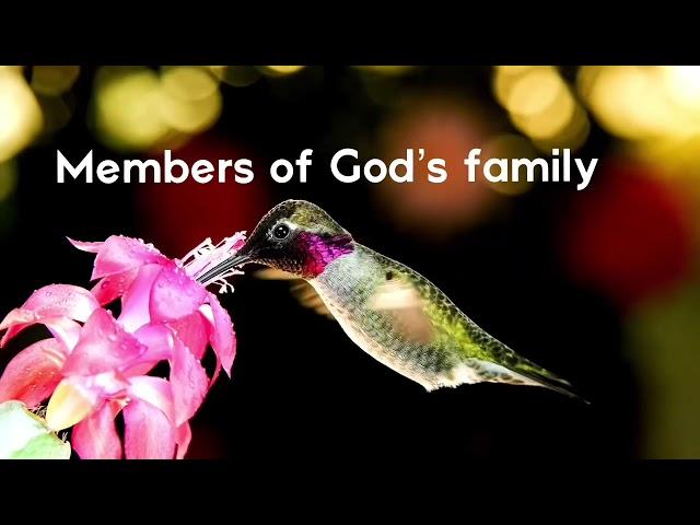 Members of God´s family