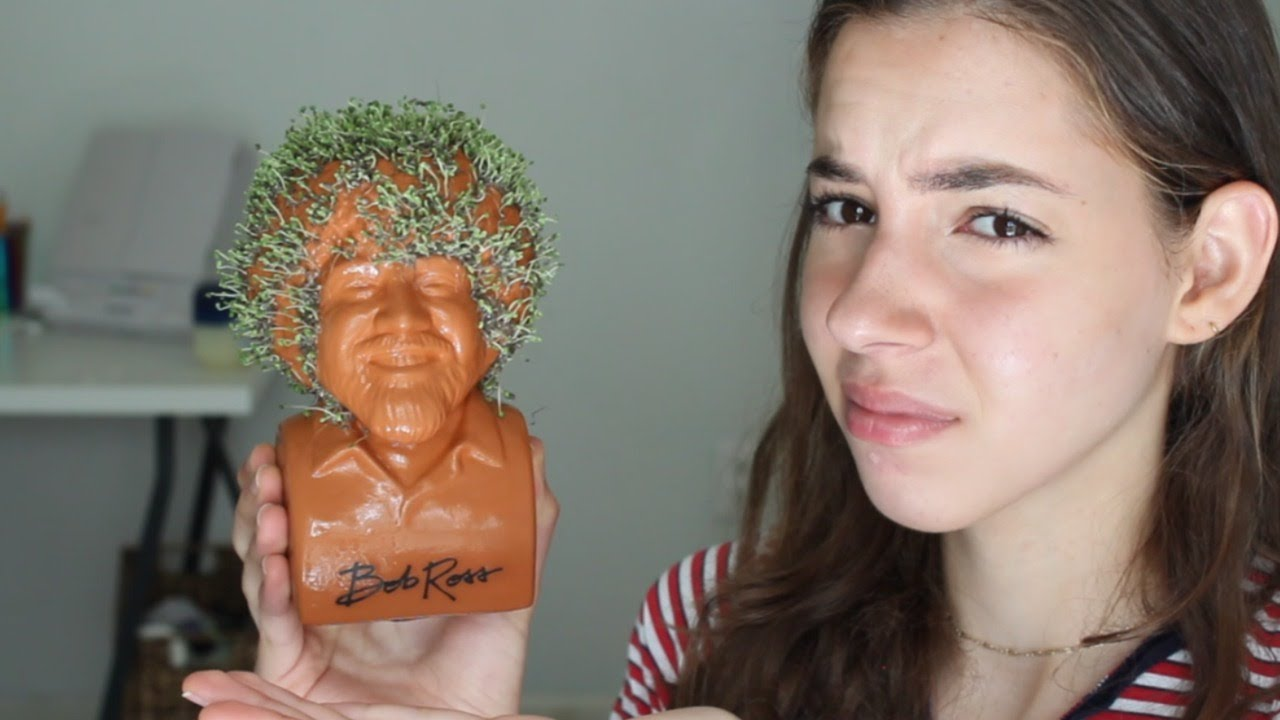 I Grew A Bob Ross Chia Pet So You Dont Have Too Youtube