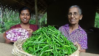 Green Chilli Recipe ❤ Spiciest curry by Grandma and daughter   Village Life