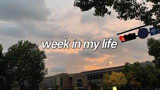 중국 일상 브이로그 | 개강 후의 나는 내가 아니다(´…