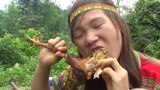 Survival skills: Primitive skills hunting forest chicken  Yummy cooking chicken  Eating delicious
