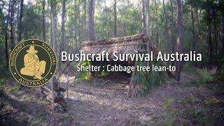 Bushcraft Survival Australia - Shelter: Cabbage tree lean-to