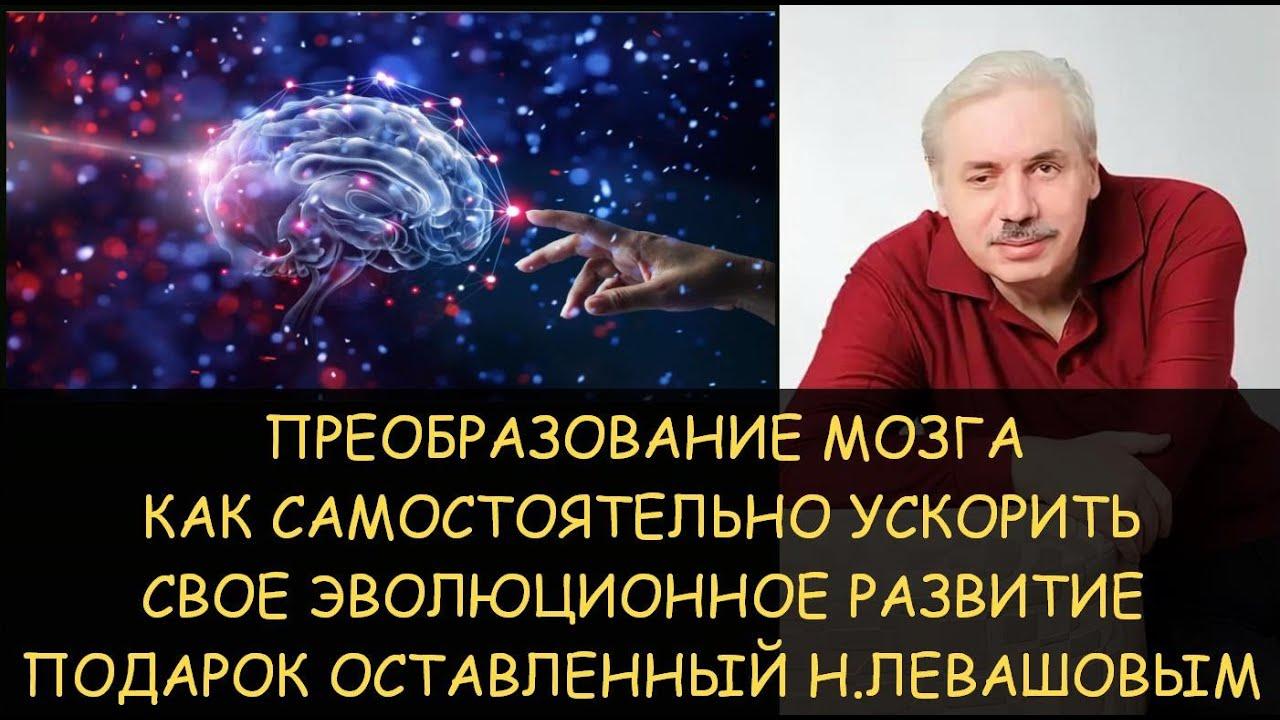 Эволюционное преобразование мозга от Николая Левашова или как самостоятельно ускорить свое развитие