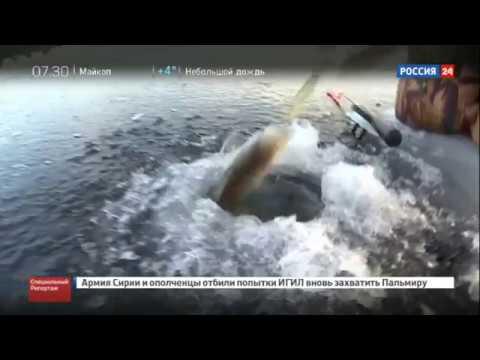 Провалился под лёд !!! Смертельная рыбалка !!! Почему люди рискуют и тонут из-за рыбы !!!