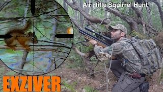 Air Rifle Squirrel Hunting with the Edgun Matador