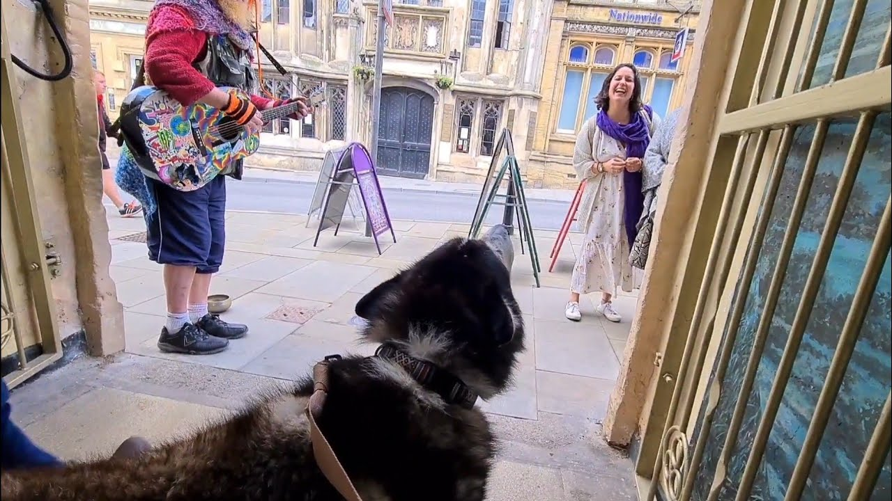 Busker sings to Husky, so cute