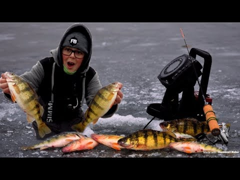 Ice Fishing For Jumbo Perch (Wisconsin)