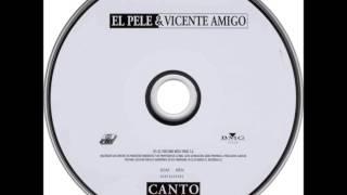 El Pele Y Vicente Amigo - Llamale Amor - (rumbas)