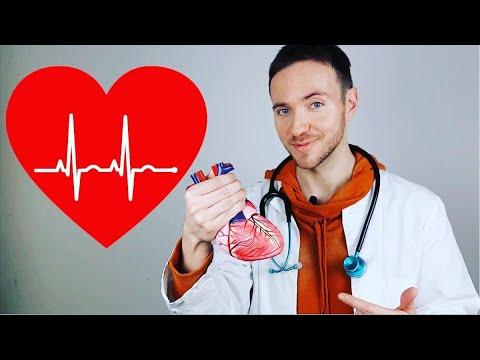 Warum schlägt das Herz? - YouTube