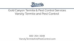 Gold Canyon Termite & Pest Control Services With Varsity