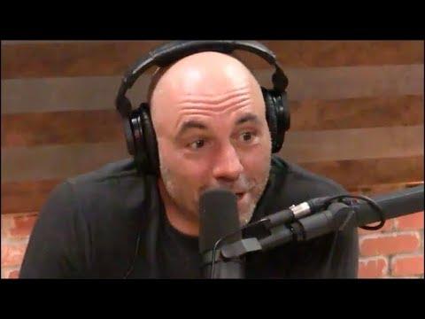 Joe Rogan - I'd Have Louis CK on the Podcast