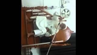 Dawoojee Issackjee Sunan Abu Dawud 18 12 14 wazoo