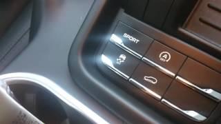 トヨタ、レクサス、ポルシェ、MINI,ベンツ、BMW、VW,アウディなどコーデ...
