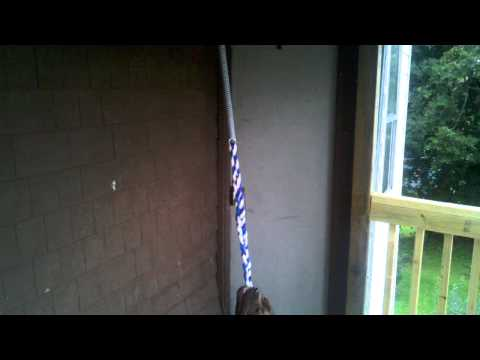 Spring poles for sale $40