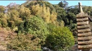 【鎌倉の寺】覚園寺