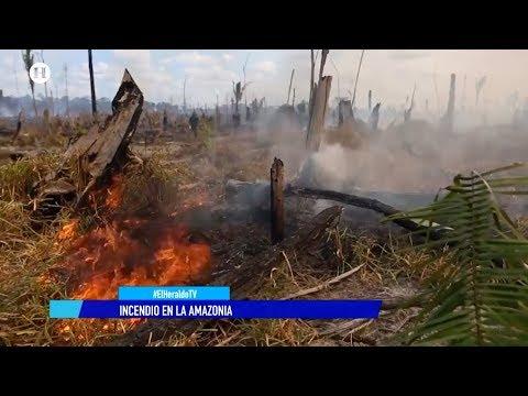 Jair Bolsonaro, gran culpable de incendio en Amazonas: Frederico Noleto