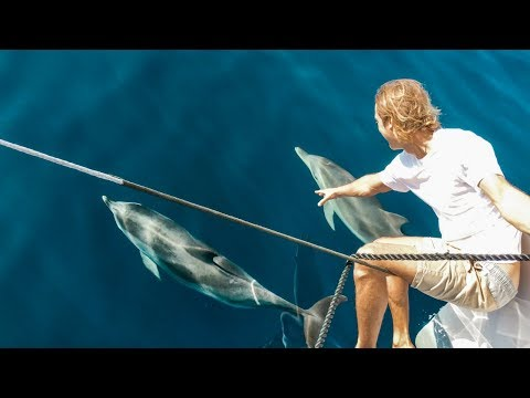 5 Long Days at Sea With Friendly Tuna, Dolphin Mayhem and 3 Amigos; Ep. 133