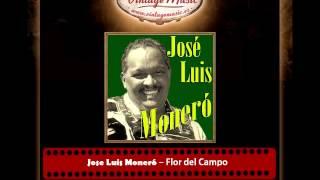 Jose Luis Moneró – Flor del Campo