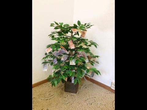 Денежное дерево своими руками | DIY MONEY TREE