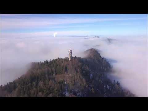 Foggy day in Üetliberg, Zurich, Switzerland
