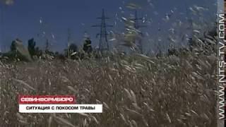 26.06.2017 Дмитрий Овсянников подарил газонокосилку профильному чиновнику за плохой покос травы