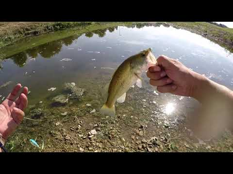 Fort Worth Fishing! (FIRST VIDEO!!)