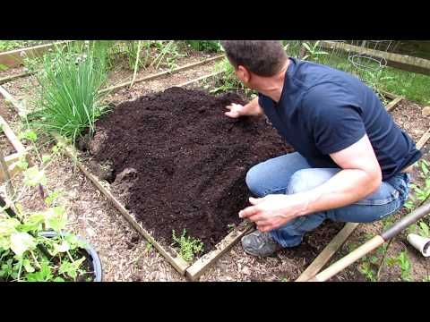A Complete Guide to Digging & Planting Your First Vegetable Garden: Tomatoes, Peppers & Herbs