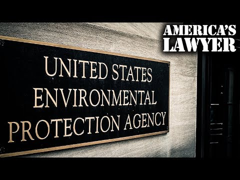 Court Tells EPA That They Have To Do Their Job And Protect The Environment
