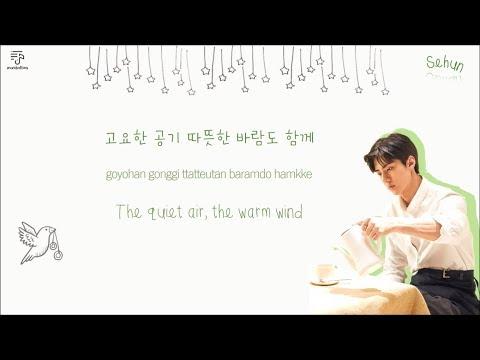 EXO 엑소 - Been Through 지나갈 테니...