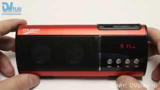 Musky HJ-93 - мини акустика, FM-радио, USB и SD.