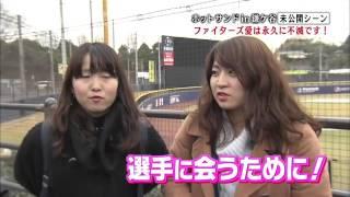 【STV】「熱烈!ホットサンドZ!」#86