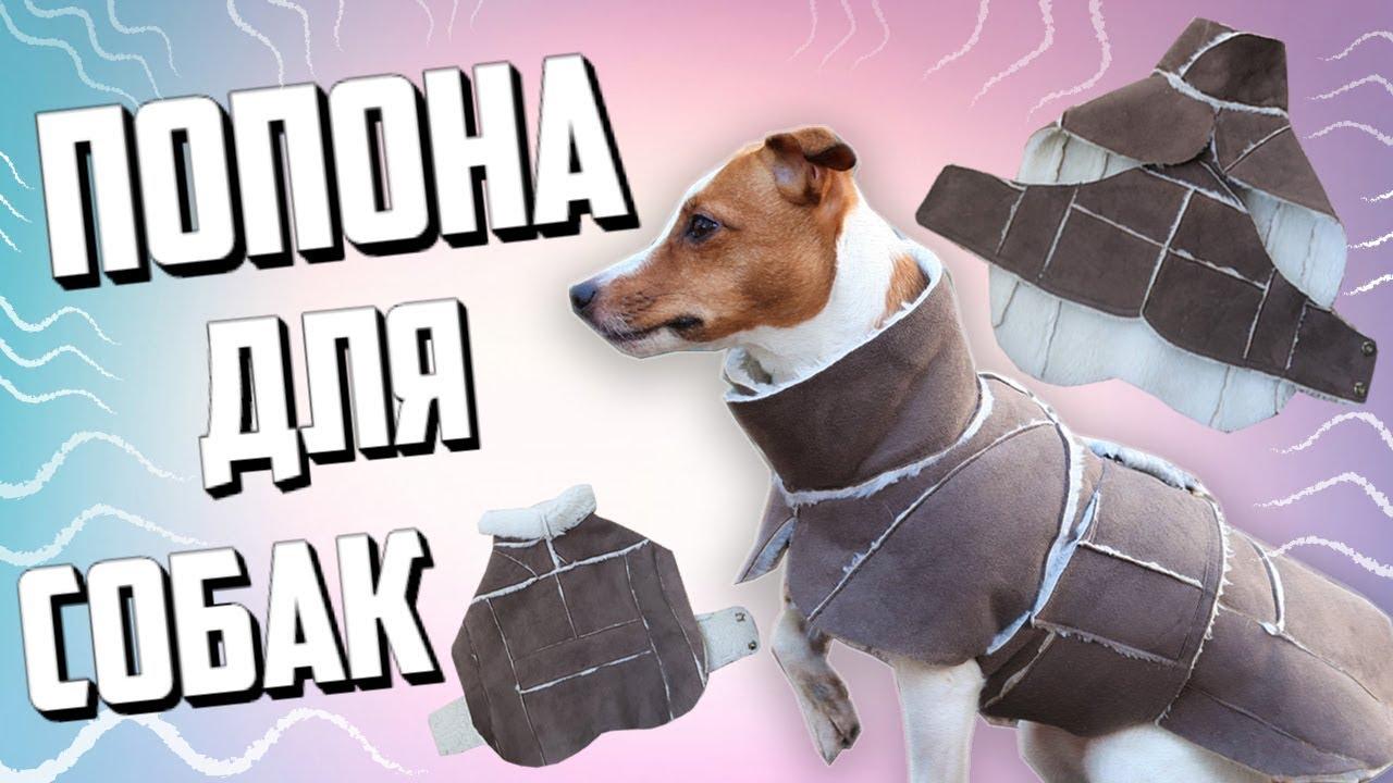 Зимняя одежда для собак своими руками