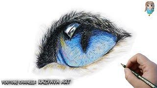 Как нарисовать глаз кошки цветными карандашами😺